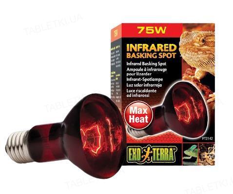 Лампа инфракрасная для террариума Exo Terra R20/75W
