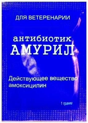 Амурил (ДЛЯ ЖИВОТНЫХ) порошок для перорального применения, 1 г