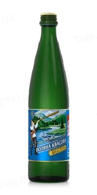 Вода минеральная Поляна Квасова сильногазированная, стеклянная бутылка, 0,5 л