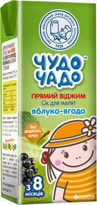 Сок фруктовый Чудо-Чадо из яблок и черной рябины неосветленный «Яблоко-ягода», 200 мл