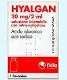 Гіалган розчин д/ін. 20 мг/2 мл по 2 мл №1 у флак.